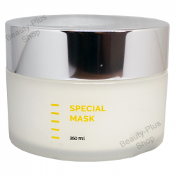 Holy Land - Special Mask 250ml